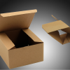 Auto lock Boxes Emans Packaging