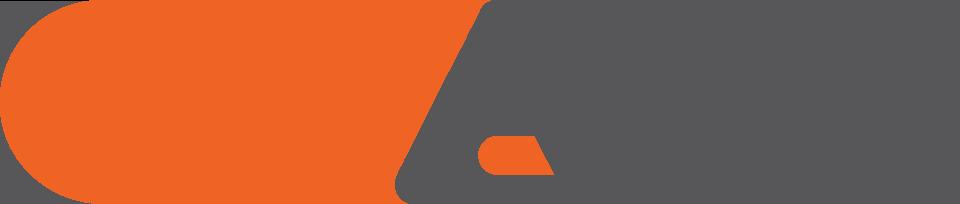 logo--color